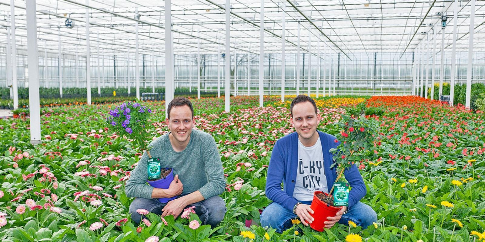 Our growers for Roobos wholesaler for flowers and plants: Plantanious