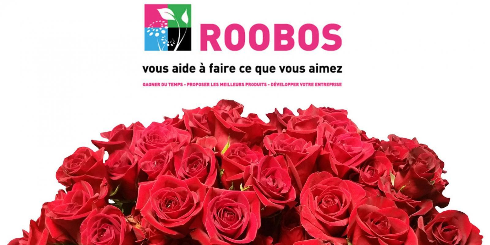 Valentine's day at Roobos Wholesale for flowers and plants